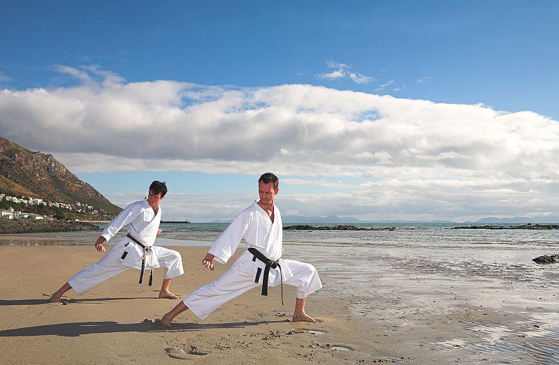 Kostenloses Shotokan Kata eBook